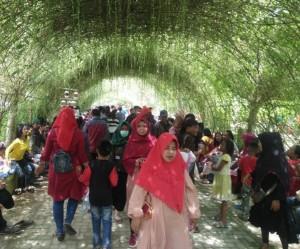 Libur Tahun Baru, Taman Kehayati Mesuji Jadi Sasaran Wisatawan Lokal