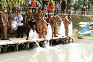 Gubernur Lampung Launching Implementasi Kartu Petani Berjaya Di  Pringsewu
