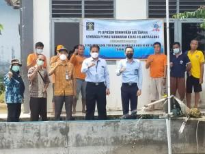 Tebar 5000 Benih Ikan, Lapas Kota Agung Lanjutkan Program Budidaya Ikan Air Tawar